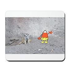 'Meerkat Corn' Mousepad