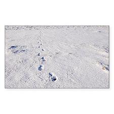Footprints in snow - Decal