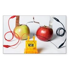 Fruit-powered clock - Decal
