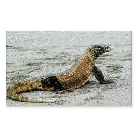 Komodo dragon on a beach - Sticker (Rectangle)
