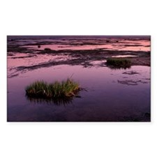 Mud flats at low tide - Decal