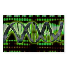 DNA helix - Decal