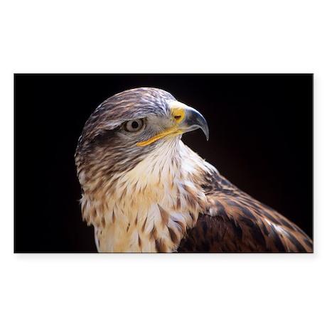 Ferruginous buzzard - Sticker (Rectangle)