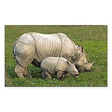 Indian rhinoceroses - Decal