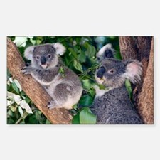 Mother koala and young - Decal