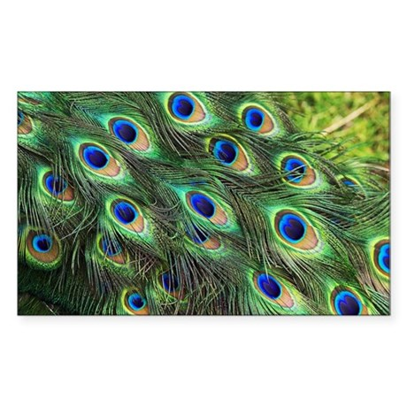 Peacock feathers - Sticker (Rectangle)