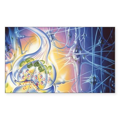 Nerve synapse - Sticker (Rectangle)
