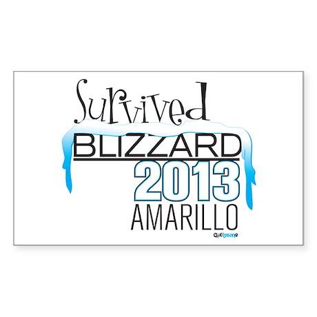 Survived Blizzard 2013 Amarillo Sticker