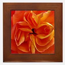 Georgia in Orange Framed Tile