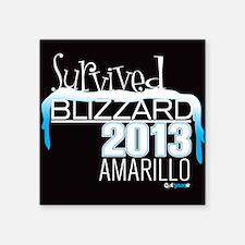 Survived Blizzard 2013 Amarillo - black Sticker