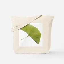 Maidenhair leaf (Ginkgo biloba) - Tote Bag