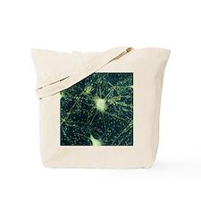 Motor neurons, light micrograph - Tote Bag