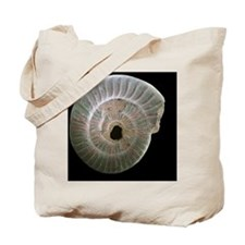 Ammonite fossil, SEM - Tote Bag