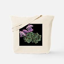 DNA repair molecule, artwork - Tote Bag