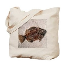 Fossilised fish, Priscacara serata - Tote Bag