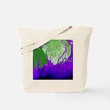 Ganges Delta - Tote Bag