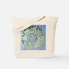 Liver macrophage cell, TEM - Tote Bag