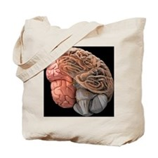 Human brain, artwork - Tote Bag