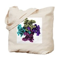 Mitochondrial RNA binding proteins - Tote Bag
