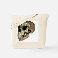 Neanderthal skull - Tote Bag