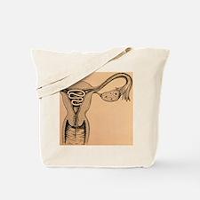 e uterus - Tote Bag