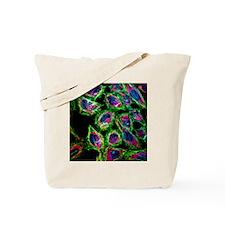 HeLa cancer cells - Tote Bag