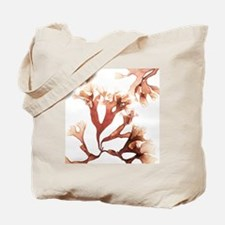 Irish moss seaweed - Tote Bag