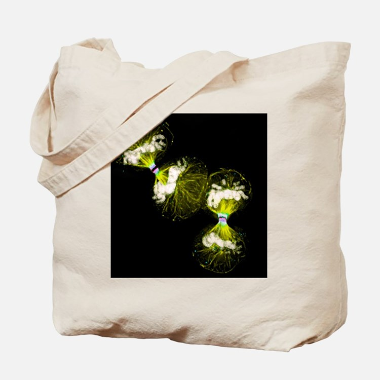 Cell division - Tote Bag