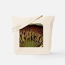 Ciliary body, SEM - Tote Bag