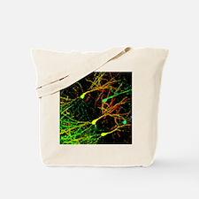 Mouse brain neurons, light micrograph - Tote Bag