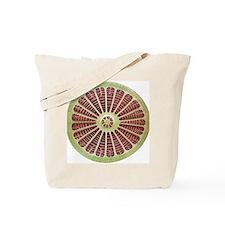 Diatom, SEM - Tote Bag