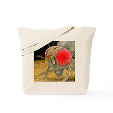 Fruit fly, SEM - Tote Bag