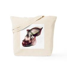 Gorilla skull, X-ray - Tote Bag