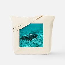 Coelacanth fish - Tote Bag