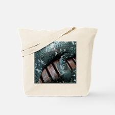 Coelacanth fish fin - Tote Bag