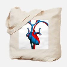Heart and blood vessels, artwork - Tote Bag