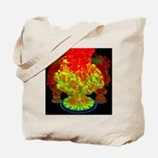 Fire plumes, computer simulation - Tote Bag