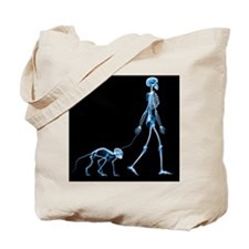 Skeleton walking a marmoset, X-ray - Tote Bag