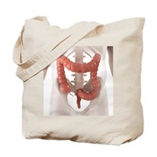 Healthy large intestine, artwork - Tote Bag