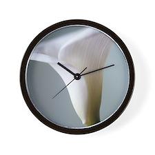 Calla lily (Zantedeschia sp.) - Wall Clock
