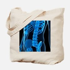 Lower spine, artwork - Tote Bag