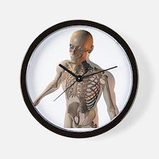 Upper body bones - Wall Clock