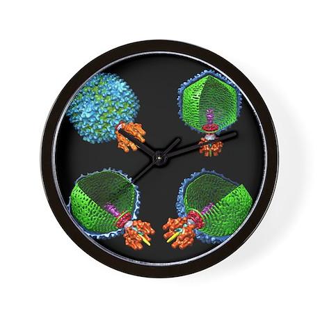 Bacteriophage P22, computer model - Wall Clock
