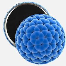 Buckyball molecule C320, artwork - Magnet