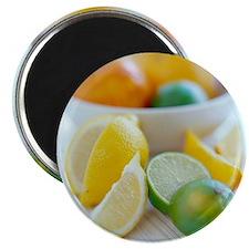 Citrus fruits - Magnet