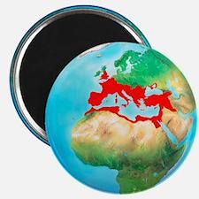 Roman Empire, artwork - Magnet