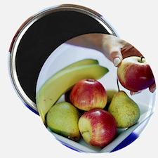 Assorted fruit - Magnet
