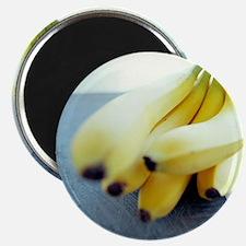Bunch of bananas - Magnet