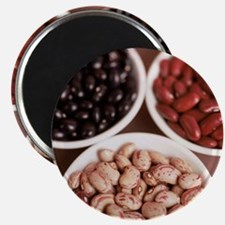 Dried pulses - Magnet