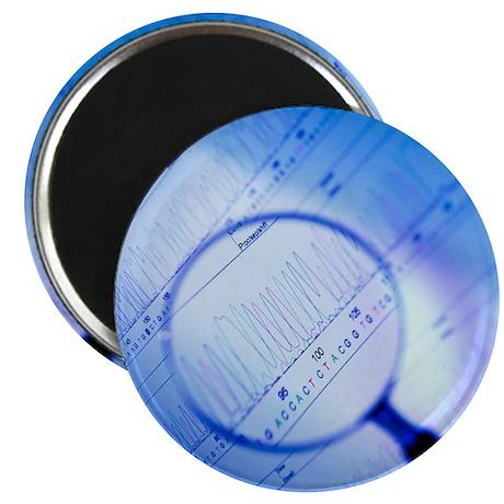 DNA analysis - Magnet